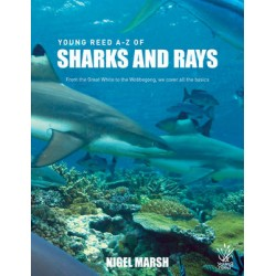 Yr: A-Z Sharks and Rays