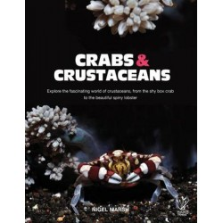 YR: CRABS AND CRUSTACEANS